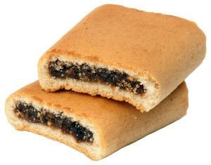 Fig Newtons Copycat Recipe
