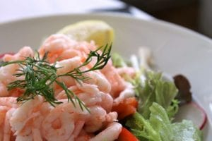 close-up view of shrimp salad with fresh dill on top