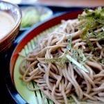Healthy Crockpot Soba Noodles Recipe