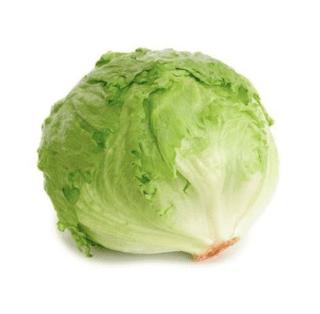 Iceberg Lettuce Fresh Produce