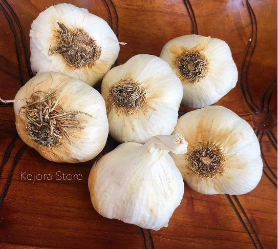KEJORA Fresh Garlic Bulbs for Planting OR Eating and Cooking