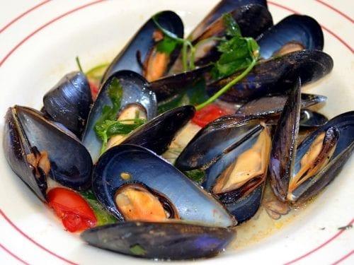 steamed greek mussels recipe