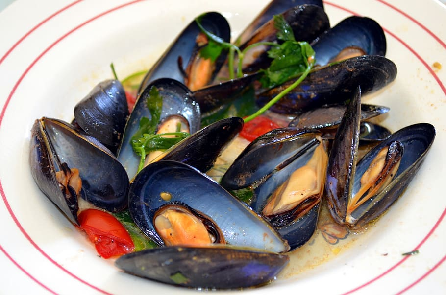 Greek Mussels Recipe