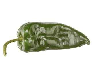 Pasilla (Pobalano) Pepper
