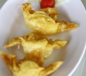 Turkey-Cranberry Wontons Recipe