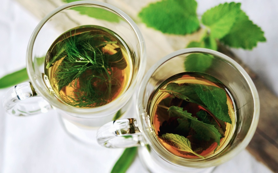 tisane herbal tea versus tea difference