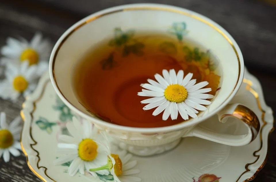 chamomile tea dried chamomile flower tea cup