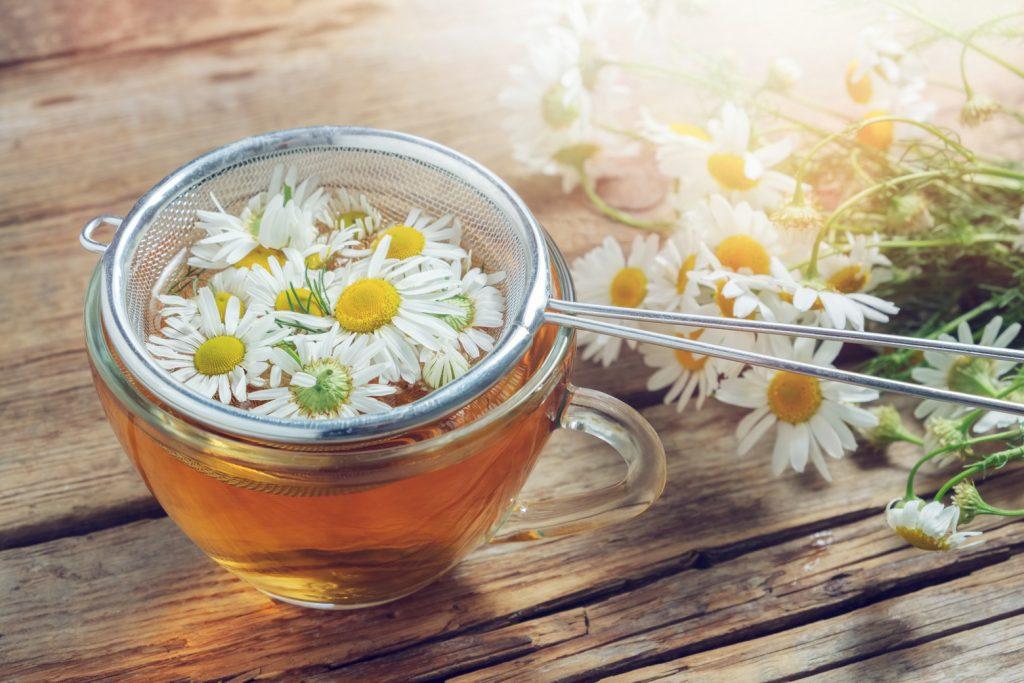 steeping infusion chamomile tea dried chamomile flowers