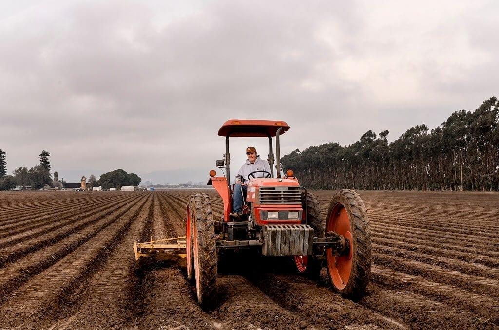 local farmers real fresh food