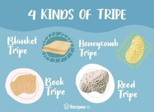What Is Tripe - 4 kinds of Tripe
