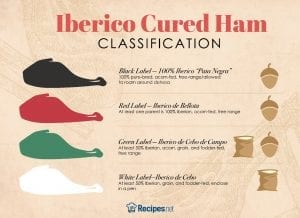 Iberico Cured Ham Classification Infographic