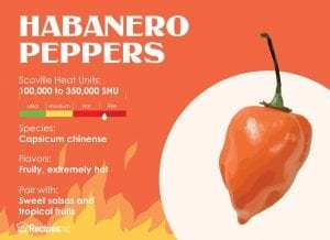 how hot are habanero peppers