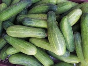 pile of Japanese cucumbers