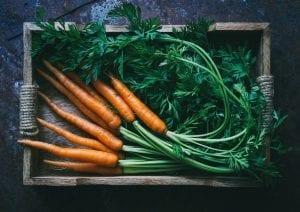 storing-carrots