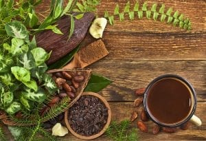 Cocoa pods, cocoa beans, cocoa nibs in a bowl, a cup of cacao drink, cacao powder, butter in a wooden scoop and natural tropical leaves on a old wooden background
