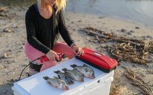 woman filleting a fish