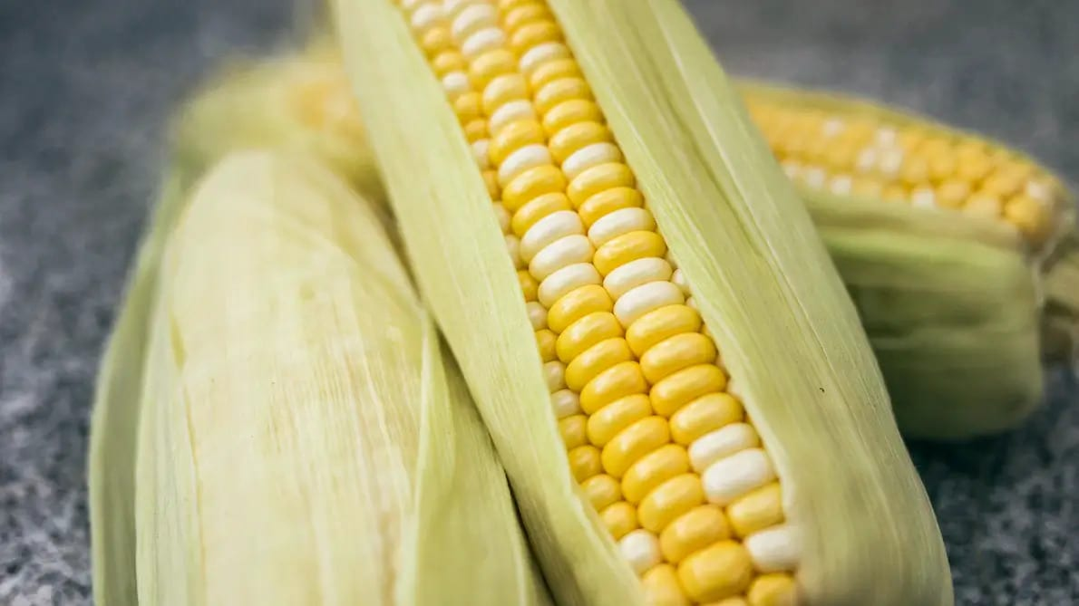 4 Methods to Keep Corn Fresh and Delicious