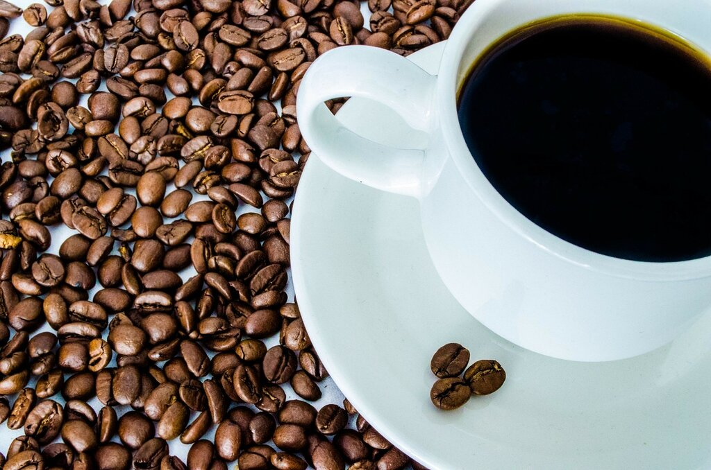 12 Best Decaf Coffee Brands To Buy In 2021