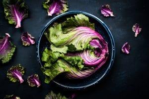 Raw Kale, Apple and Avocado Salad Recipe