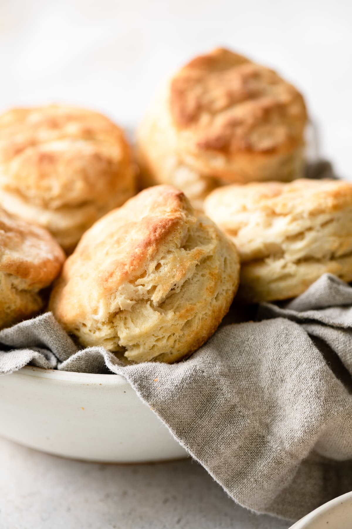 Easy Homemade Biscuits Recipe