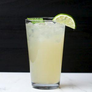 Cooling Mint Mojito Recipe