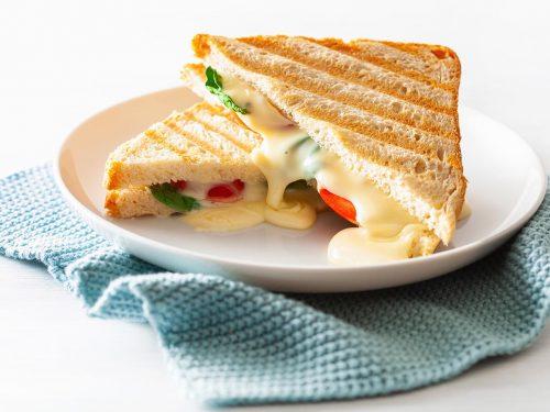 cheesy tomato grilled sandwich