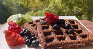 Chocolate Oatmeal Waffles Recipe