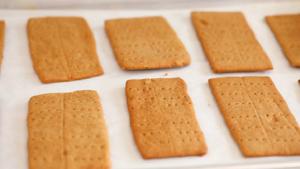 Homemade Cinnamon Graham Crackers Recipe