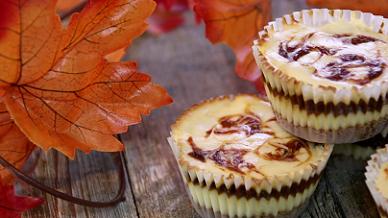 mini pumpkin swirl cheesecake recipe