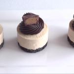 peanut butter chocolate mini cheesecakes recipe