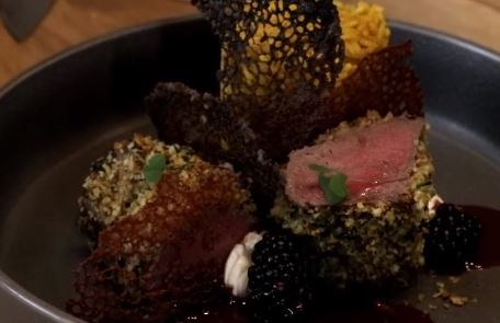 venison tips and rice recipe