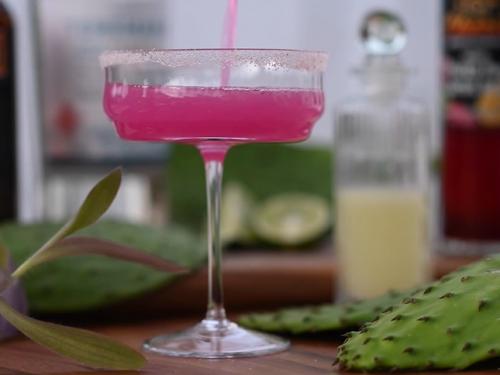 cactus berry recipe